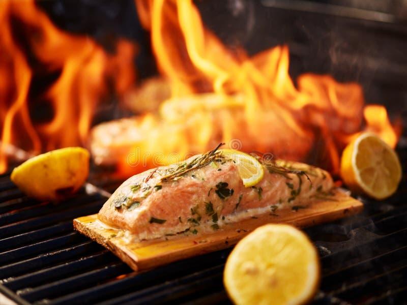 Planche de cèdre saumonée avec le citron et le romarin sur le gril photographie stock