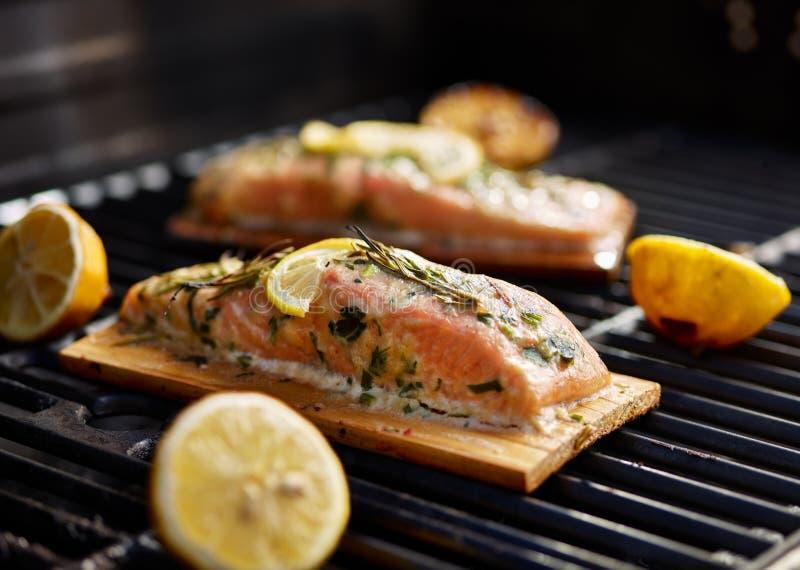 Planche de cèdre saumonée avec le citron et le romarin sur le gril images stock