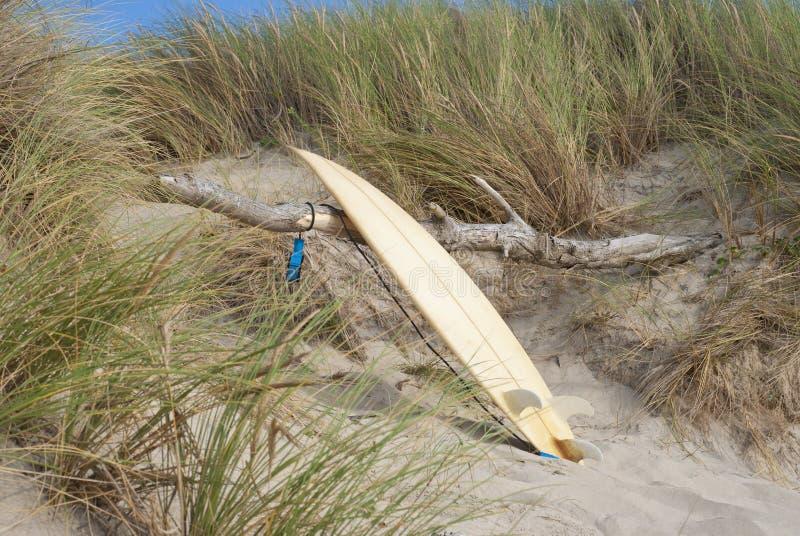 planche de surf se penchant contre le bois image stock image du r cr ation aventure 28955673. Black Bedroom Furniture Sets. Home Design Ideas