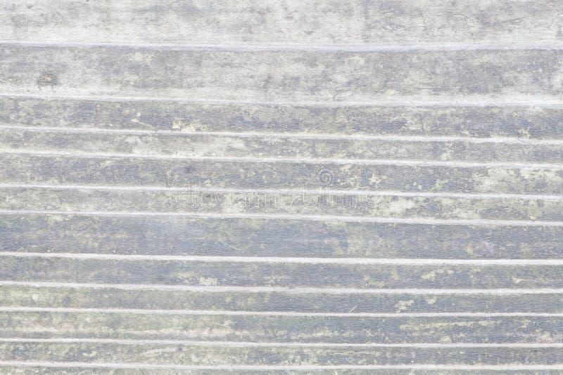 Planche en bois blanche de vintage comme texture photos libres de droits