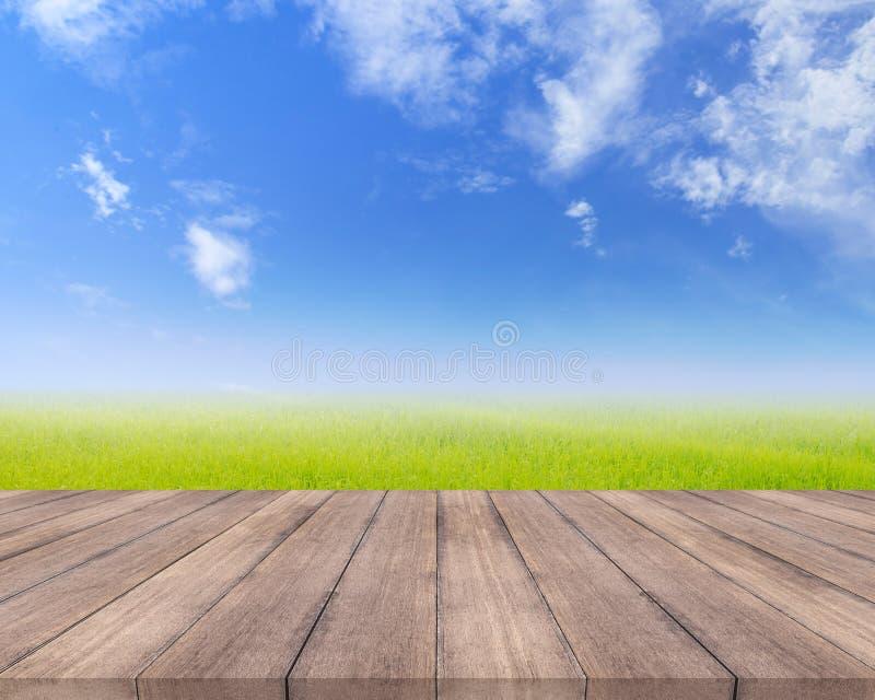 Planche en bois et champ d'herbe naturel avec le fond de ciel photo stock