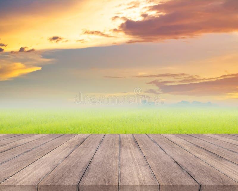 Planche en bois et champ d'herbe naturel avec le fond de ciel image stock