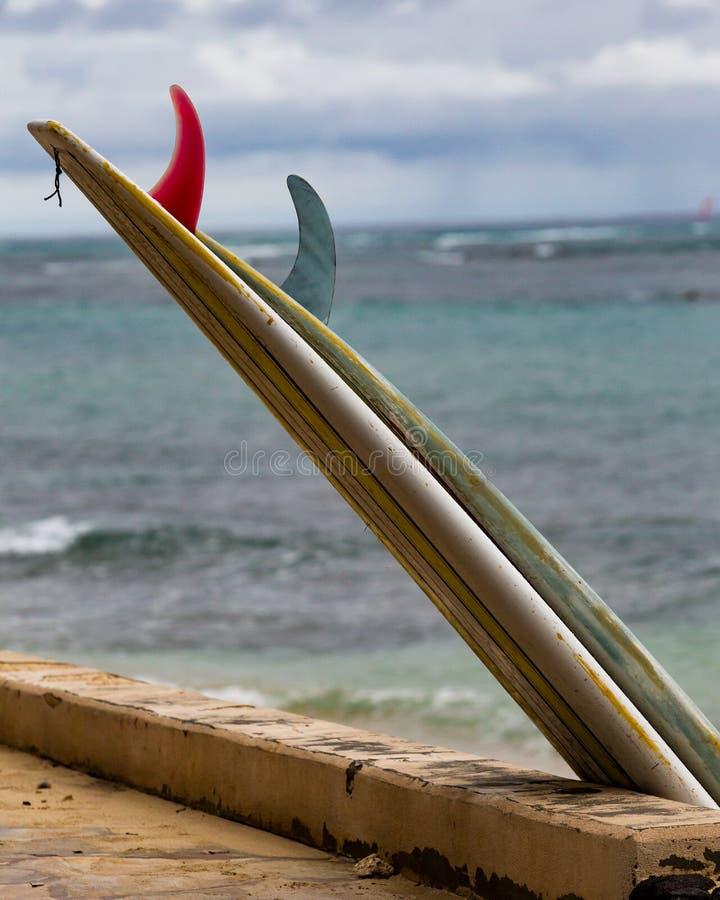 Planches de surf au repos image libre de droits