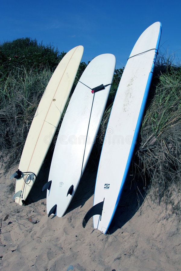 Planches de surfing sur la plage photo libre de droits