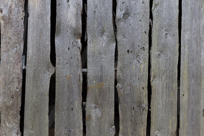 Planches en bois de texture de fond Vieux conseils gris grunges image stock