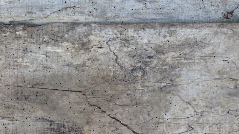 Planches rayées de vieux plancher Vintage Grey Timber vermoulu par le ver de bois photographie stock libre de droits