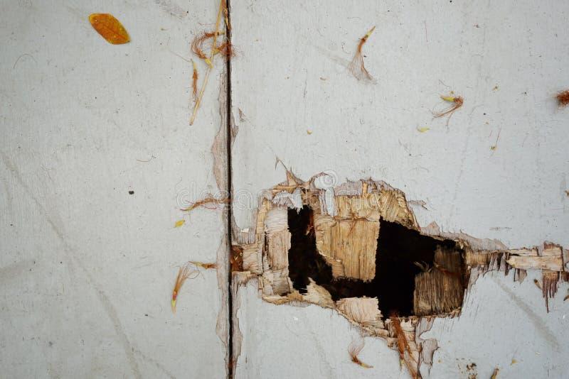 Plancia di legno bianca come fondo Carta da parati di struttura di lerciume fotografia stock