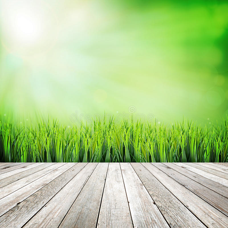 Plancia di legno su fondo astratto naturale verde fotografia stock libera da diritti