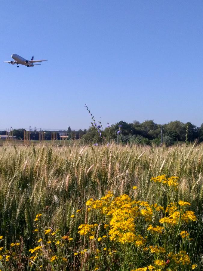 Landing Approach over Fields royalty free stock images