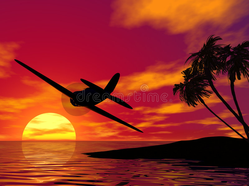 Plane at sunset vector illustration