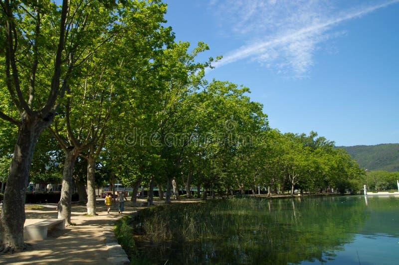 Plane trees on the waterfront of Lake o Banyoles,Spain. The alley of plane trees on the waterfront of Lake o Banyoles, Catalonia, Spain royalty free stock photos