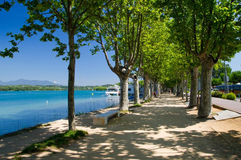 Plane trees on the waterfront of Lake o Banyoles,Spain. The alley of plane trees on the waterfront of Lake o Banyoles, Catalonia, Spain royalty free stock photography