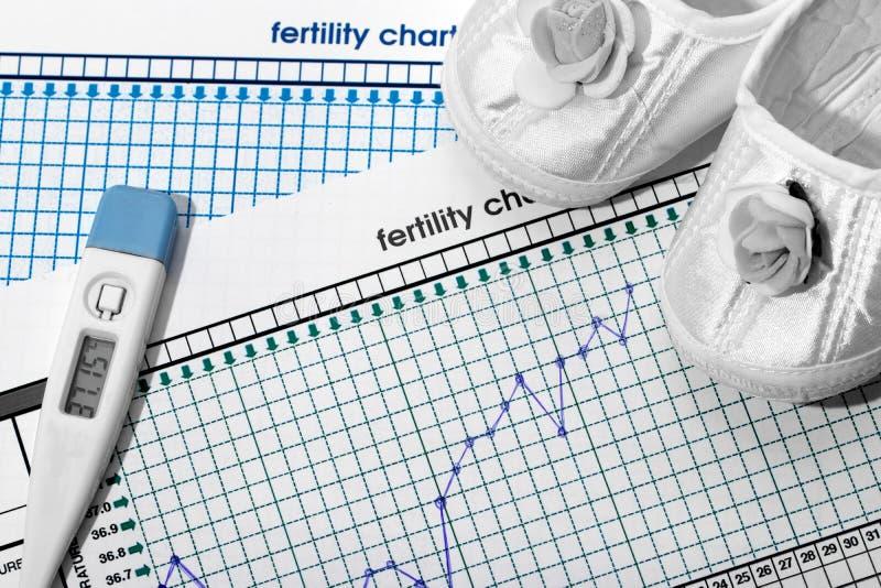 Planeamento da gravidez A carta da fertilidade fotografia de stock royalty free