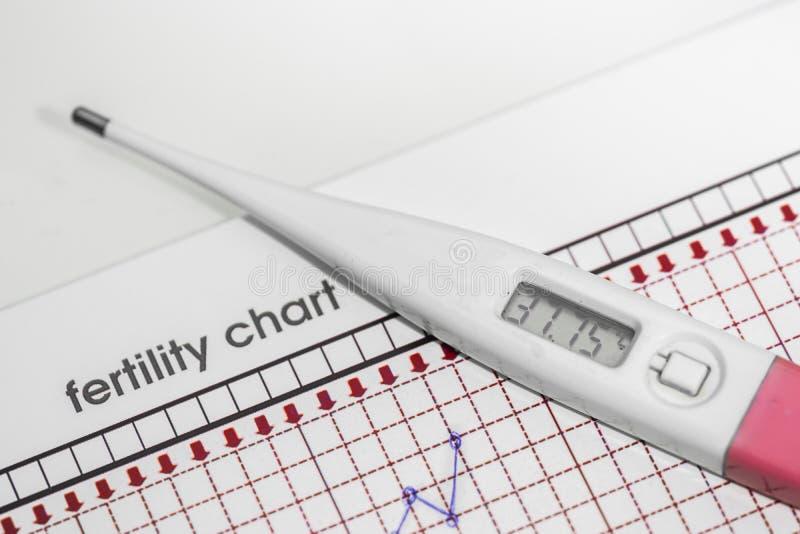 Planeamento da gravidez A carta da fertilidade imagem de stock royalty free