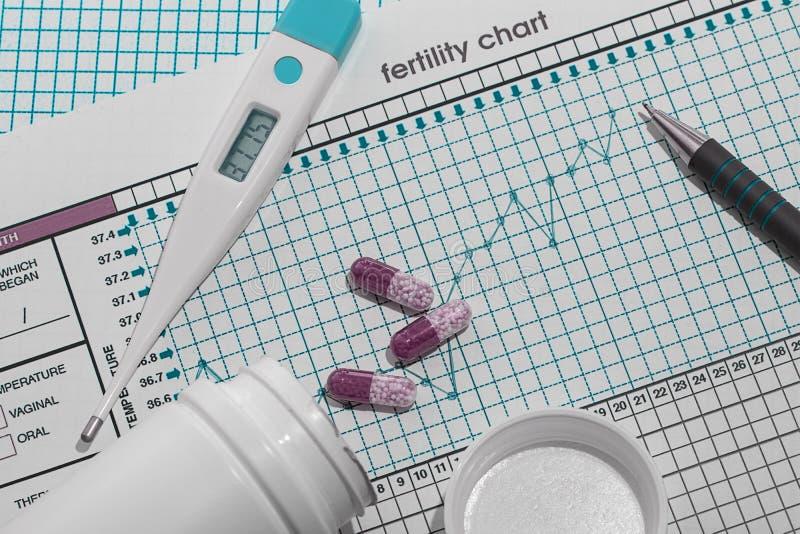Planeamento da gravidez A carta da fertilidade horizontal fotografia de stock