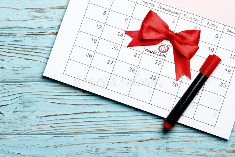 Planeamento da gravidez fotos de stock royalty free