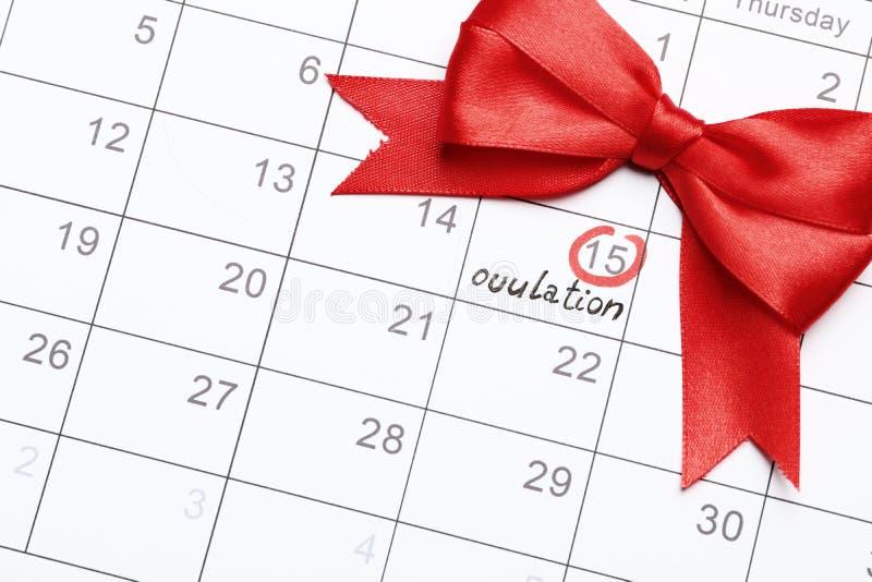 Planeamiento del embarazo foto de archivo libre de regalías