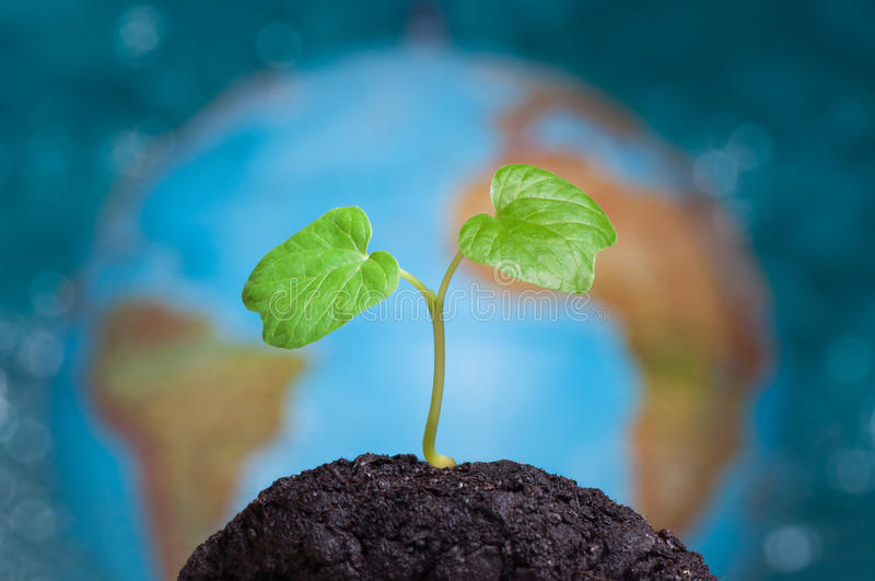 Planet Earth bihind growing plant stock photos