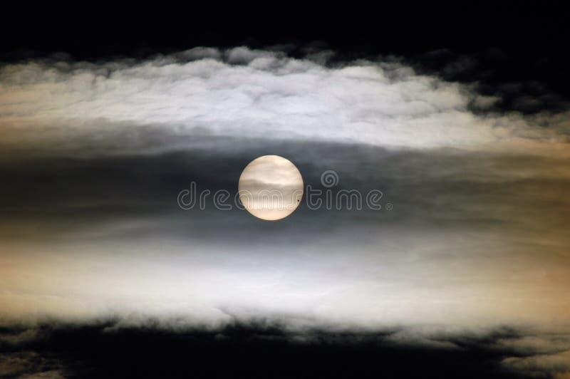 Planet Venus inför solen den 6 juni 2004 royaltyfria bilder