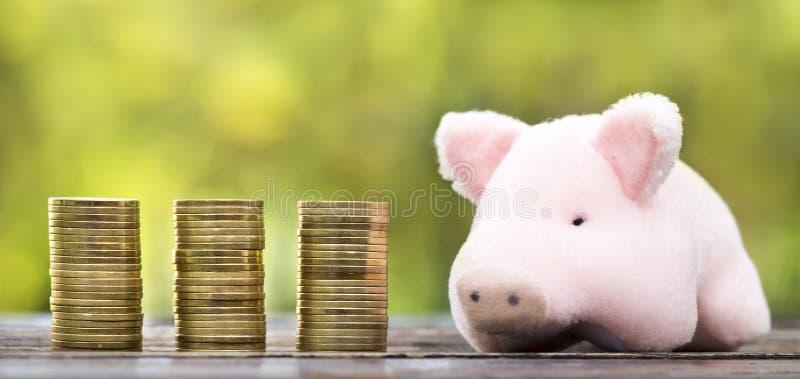 Planificación financiera, pensión, concepto del retiro - monedas del dinero del oro con un cerdo imagenes de archivo