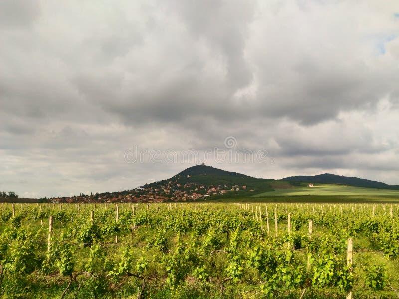 Planina de Podnozje Vrsackih, kula de Vrsacka images libres de droits