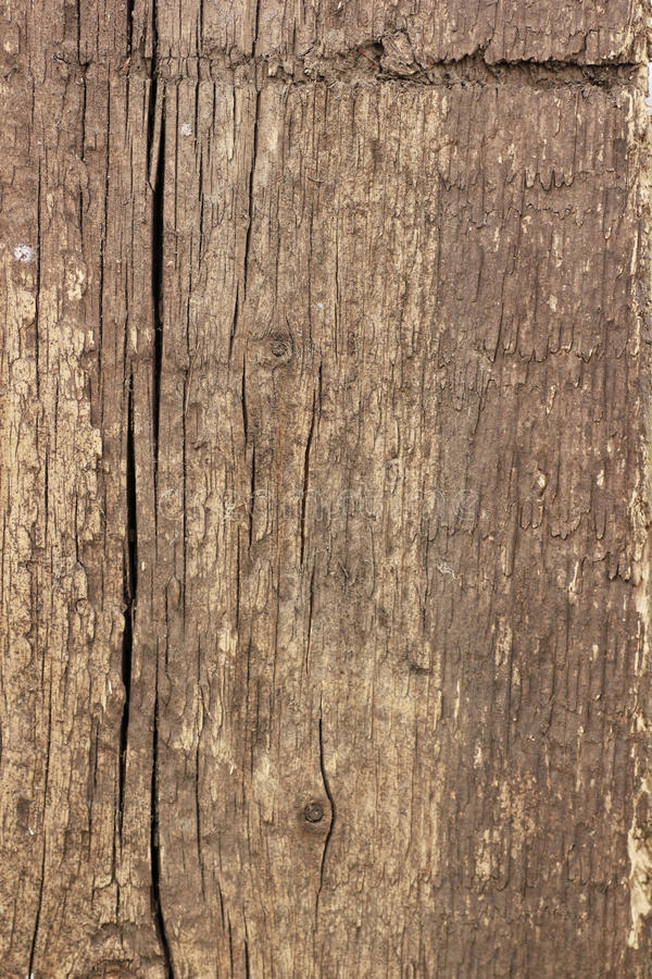 Download Plank With Knots. Royalty Free Stock Images - Image: 21139949