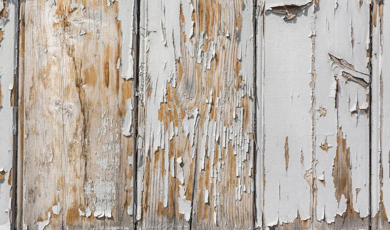 Plank texture background royalty free stock photos