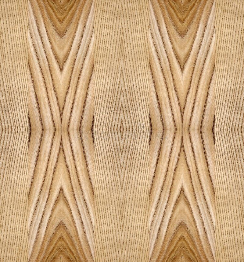 Planlägg med träprövkopior för den vita askaen och alm royaltyfri illustrationer