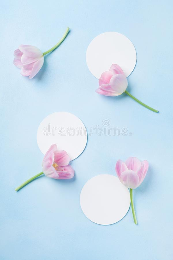 Planning or invitation concept with fresh pink tulip flowers on blue pastel background. Top view. Flat lay. royalty free stock photos