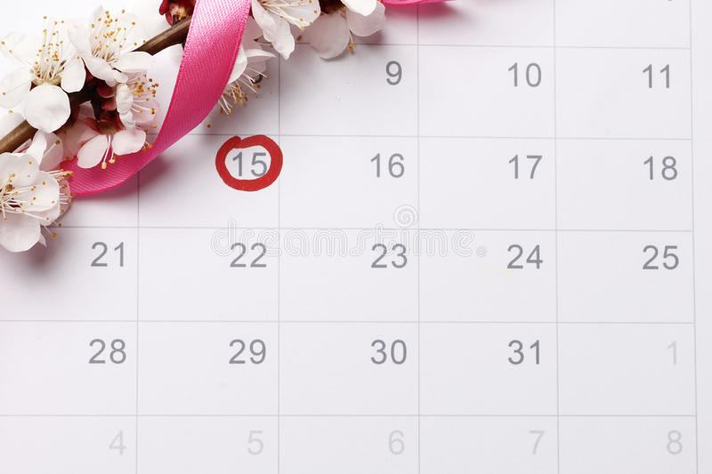 Planning of pregnancy calendar  trying to have baby. Circling the date of the 15th day in the calendar. Concept of fertility chart, trying to have baby, Reminder royalty free stock image