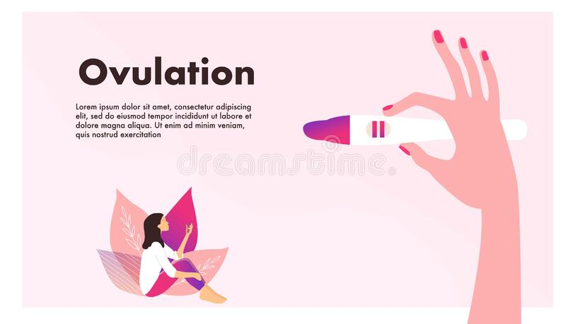 Planning of pregnancy. Pregnant woman. Hand holding ovulation or pregnancy test vector illustration. stock illustration