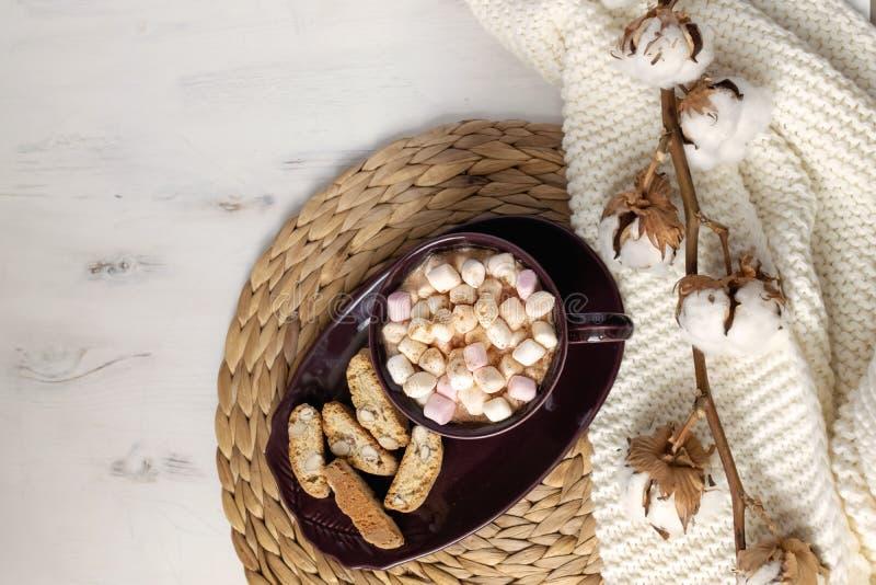 Plano do chocolate quente do inverno colocado - chocolate quente com marshmallows, cookies, ramo secado do algodão no placemat da imagens de stock
