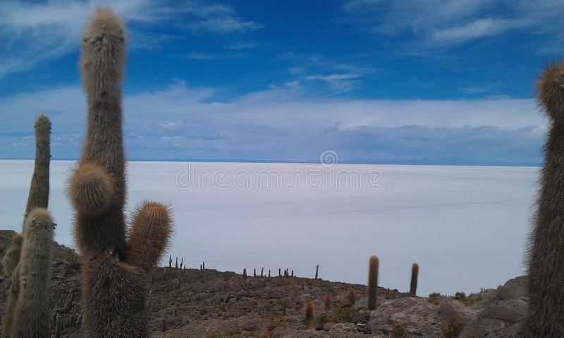 Planos de la sal de Bolivia, Salar de Uyuni imagen de archivo libre de regalías