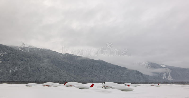 Planos sob a neve. foto de stock royalty free