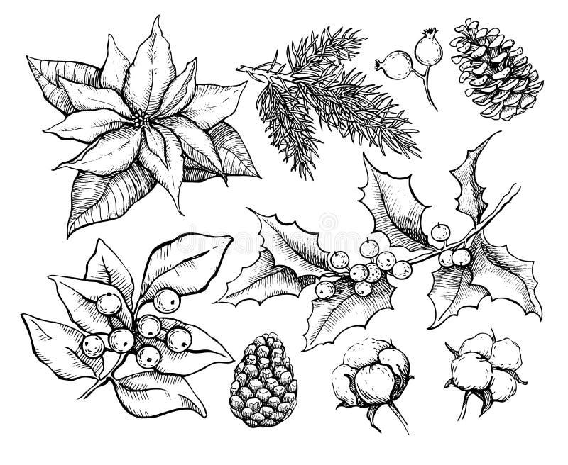 Planos tradicionais do Natal Ilustração do desenho do vetor do HOL ilustração stock