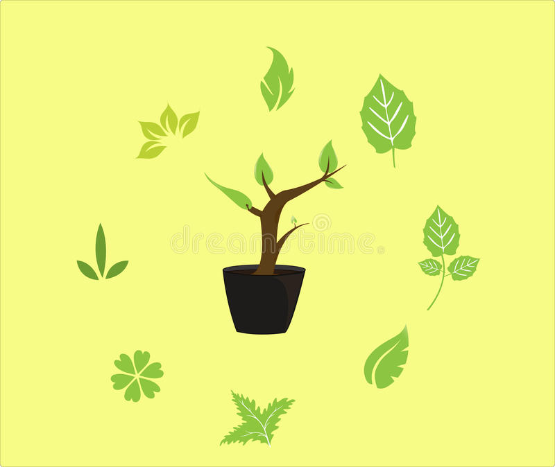 Download Plant stock vector. Image of leaves, woman, leaf, hobby - 25432737