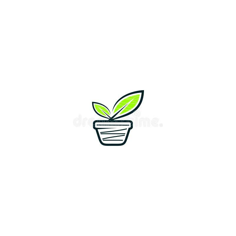 Plant amd pot logo design. A plant amd pot logo design stock illustration