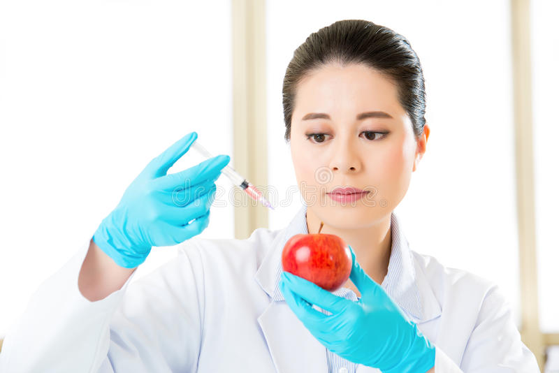 Plant biology research for genetic modification food gmo stock photos