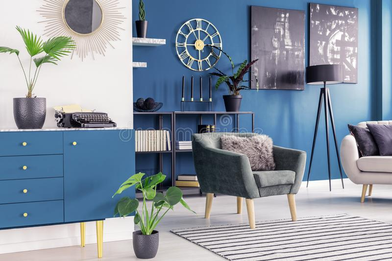 Plant in blue living room stock image