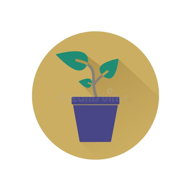 Plant colored icon royalty free stock photo