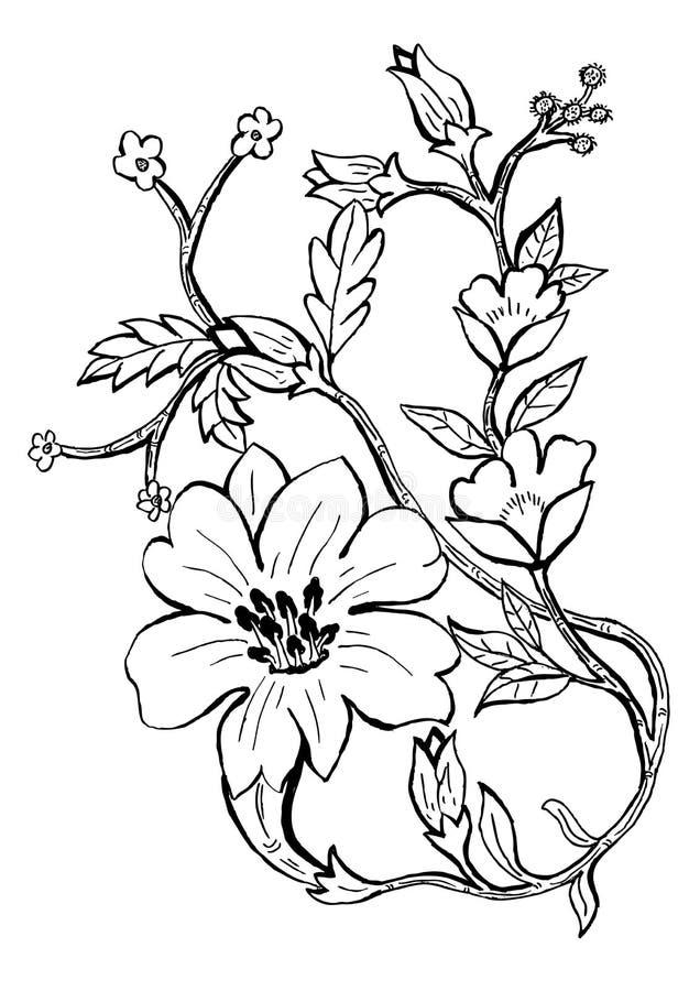 Plant design ornament stock illustration