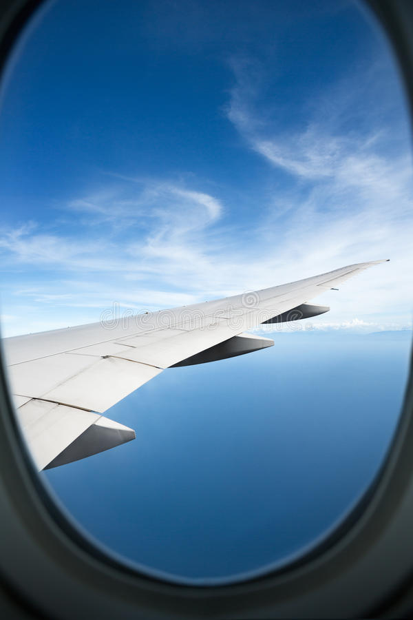 Plant fönster som är högt på de blåa himlarna arkivbilder