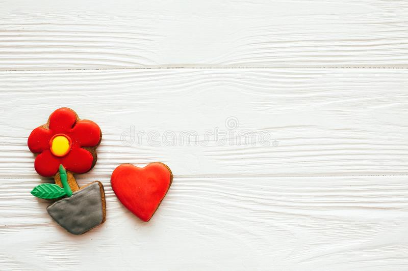 Plant flower and heart icing cookies on white wood, flat lay with space for text. Delicious sweets. Happy Mothers day. Valentine. Day royalty free stock images