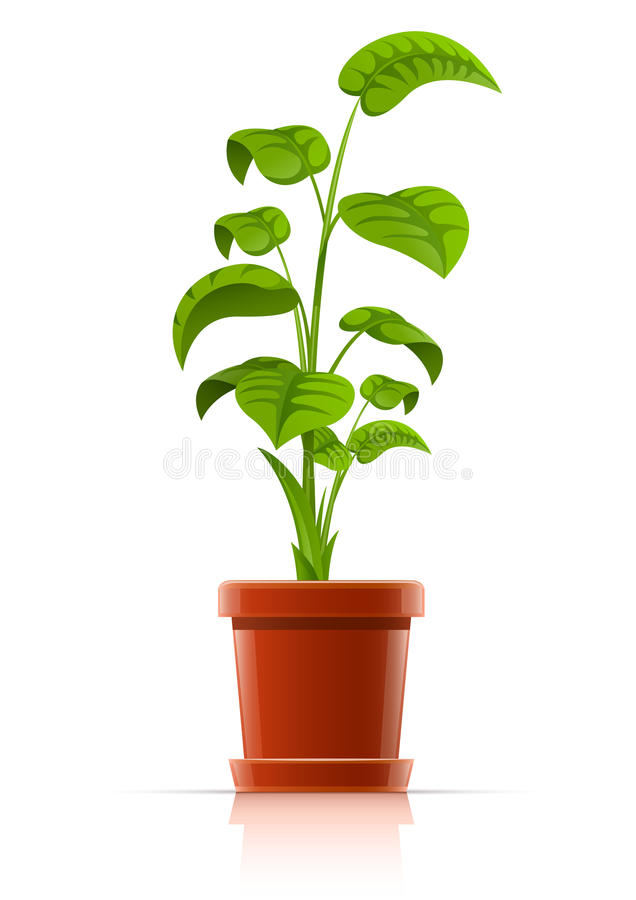Download Plant in flowerpot stock vector. Illustration of floral - 19472490