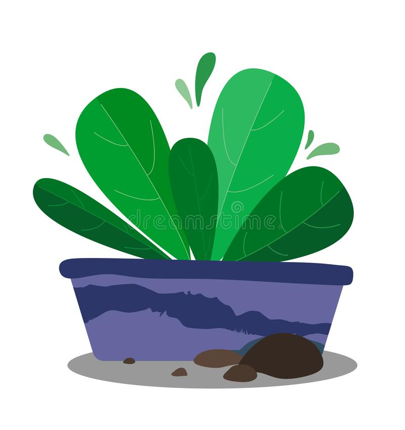 A plant in a flowerpot with pebbles, a microcosm in the style of a flat. Vector stock illustration