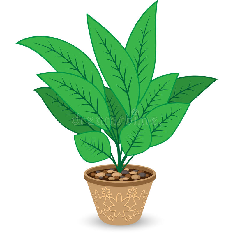 Download Plant In Flowerpot  On White Stock Vector - Image: 33573736