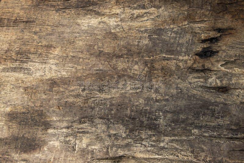 Plant foto för varm brun trätabelltextur Timmerbräde med red ut sprickor Lantlig träbästa sikt för tabell royaltyfria bilder