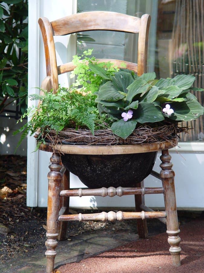 Plant, Furniture, Flowerpot, Table Free Public Domain Cc0 Image