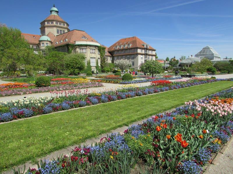 Plant, Garden, Botanical Garden, Flower stock images