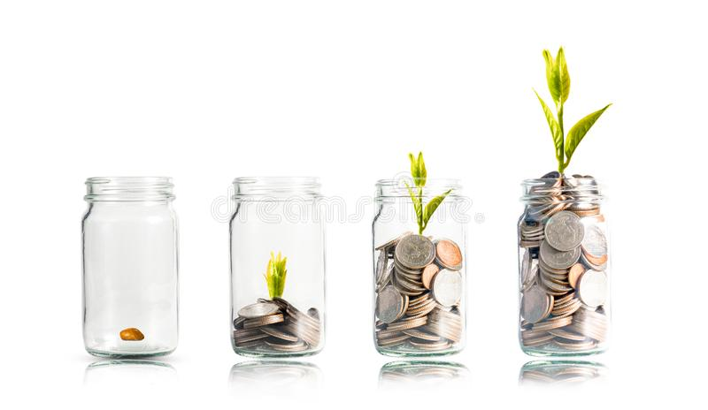 Plant glowing on coins  stacking inside of jar with white background.Dividend of Banking Deposit and stock investment concept.  stock photography